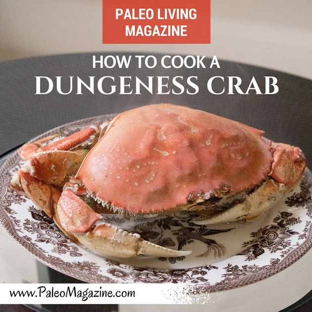How To Boil A Dungeness Crab http://paleomagazine.com/how-to-cook-dungeness-crab #paleo #primal #diet #recipe