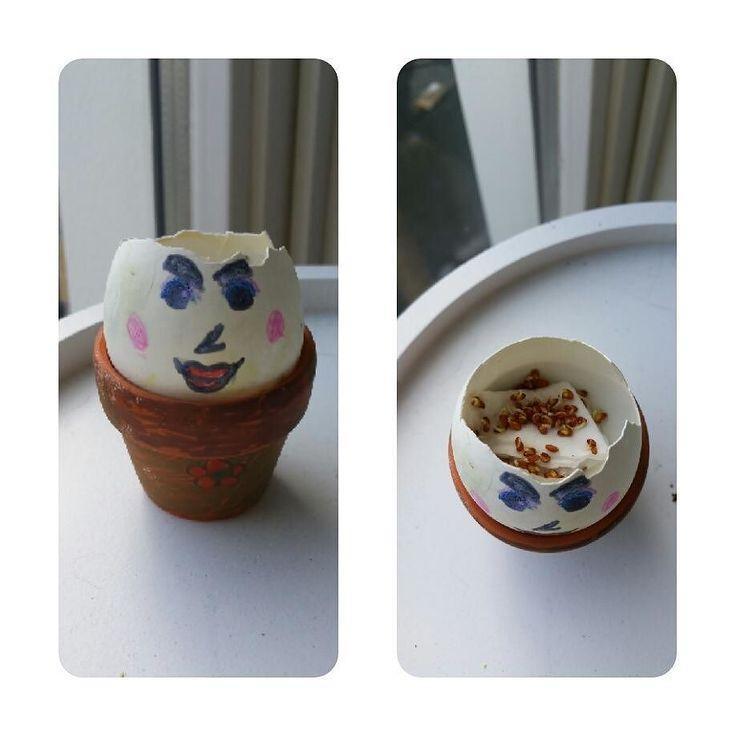 Paasknutsel van dochterlief  een eierschaaltje met tuinkers  'als de zaadjes uitkomen heeft mijn poppetje haar'  #pasen #paasknutsel #paasdiy #tuinkers #moestuin #dochter #ei #leukidee #goedidee