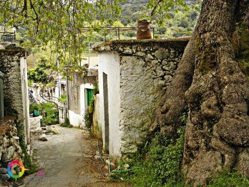 Kato Simi  #village #Crete #holiday