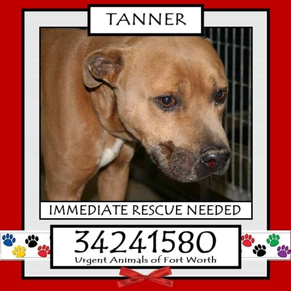 TANNER located in Fort Worth, TX, to be destroyed 2/18/2017