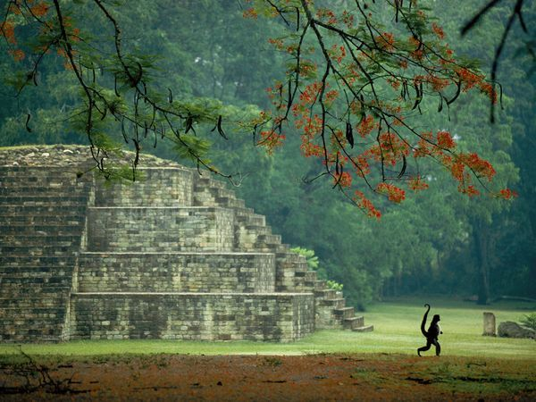 The ruins of Copán contain some of Central America's greatest Maya temples and tombs.