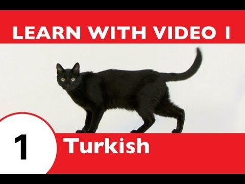 Learn Turkish in 3 Minutes!  25 videos to help learn Turkish vocabulary