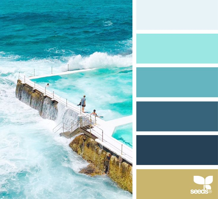 Color Swim via @designseeds
