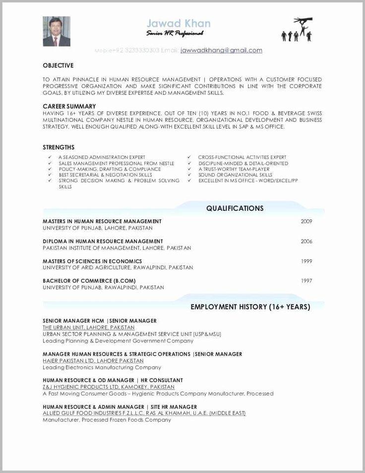 Simple Free Resume Template Elegant Simple Cv format