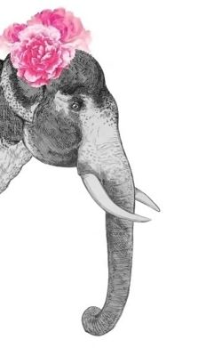 Elephant watercolor illustration- Turn into silhouette and the flower is where I'd clip bows or head bands.