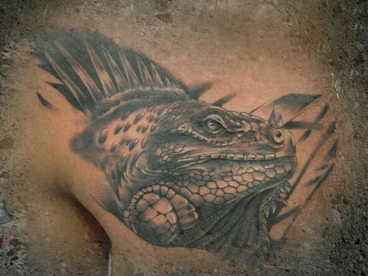 17 best images about chameleon tattoos on pinterest for Komodo dragon tattoo