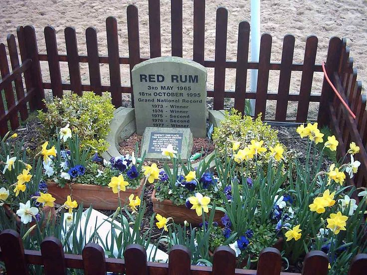 Red Rum's grave at the winning post - Aintree
