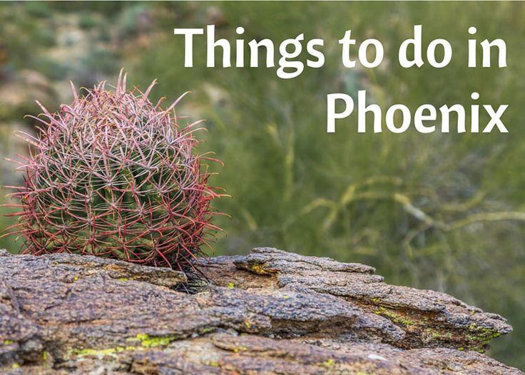 Seven Things to do in Phoenix - Misadventures with Andi