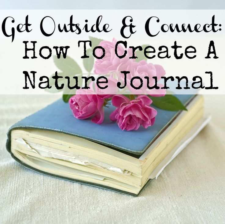 Great ideas for creating a nature journal or notebook--contains lots of outstanding resources.