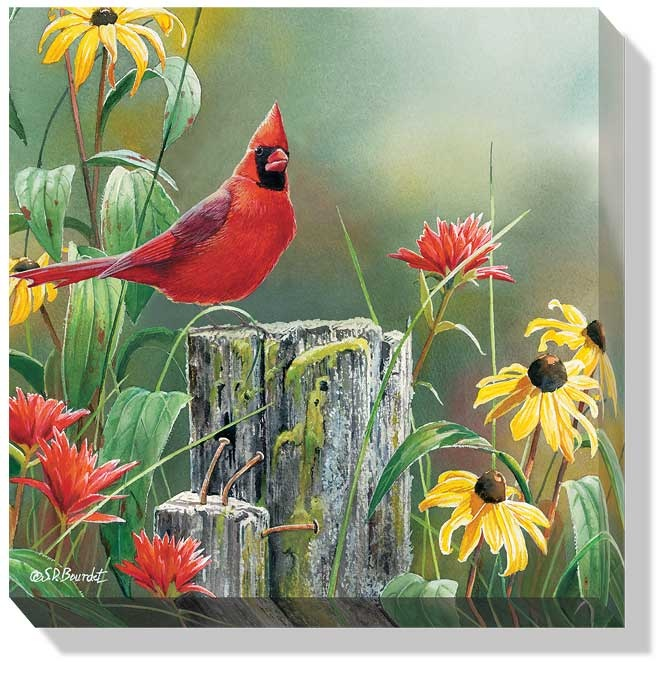 Alfa Img Showing gt Beautiful Flowers And Birds Jigsaw Puzzles