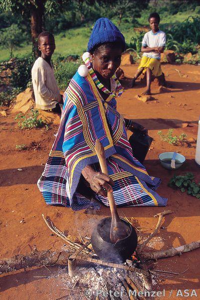 61 best Africa Venda images on Pinterest