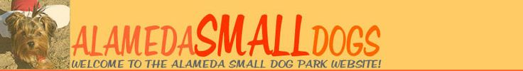 Dog Training Classes Roseville Ca For Free