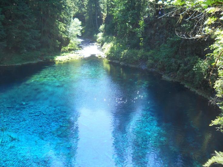 25 Unique Tamolitch Pool Ideas On Pinterest 3 Pools Oregon Blue Pool Oregon And Blue River