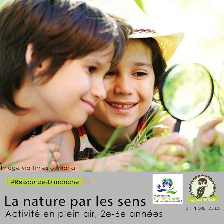 Cette semaine, pour #RessourcesDimanche de #R4R.ca, «La nature par les sens.» Une expérience d'apprentissage en plein air ou les élèves découvrent les espèces indigènes animales et végétales dans leur quartier en utilisant leurs cinq sens pour découvrir la nature.