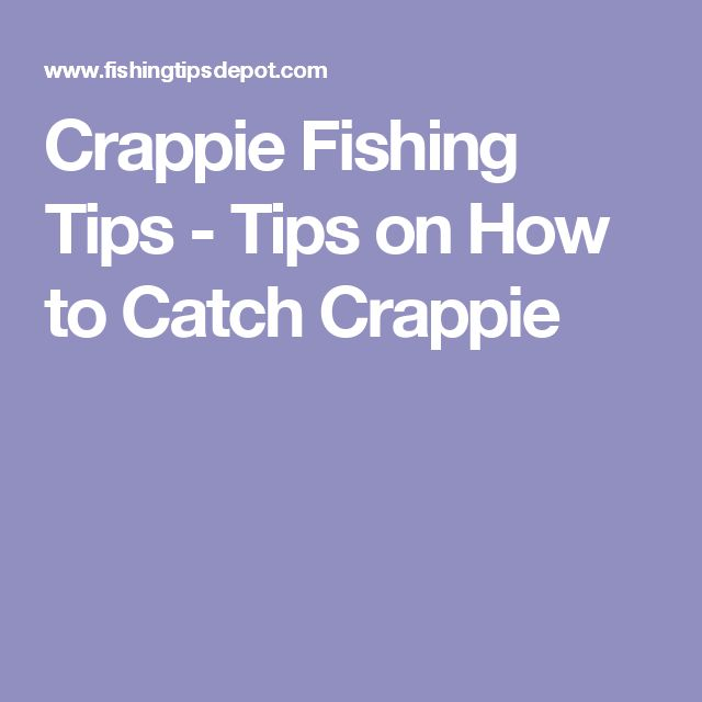 Crappie Fishing Tips - Tips on How to Catch Crappie                                                                                                                                                                                 More