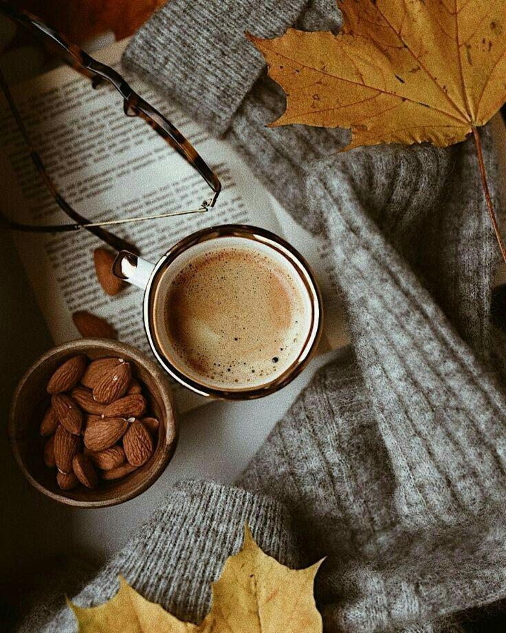 Осенняя фотография, осеннее фото в инстаграмм, фото в ...