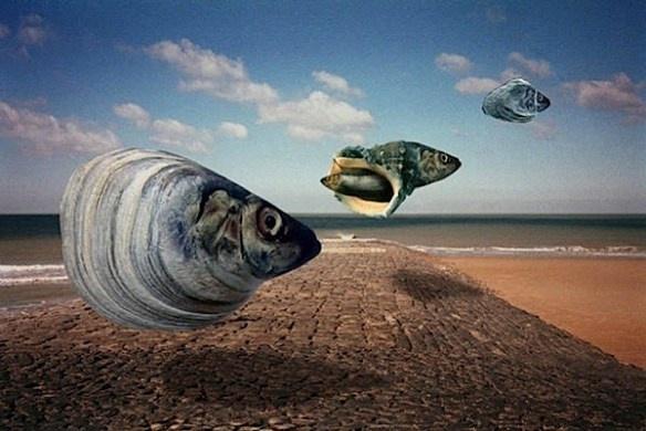 Surrealismo literario Peces