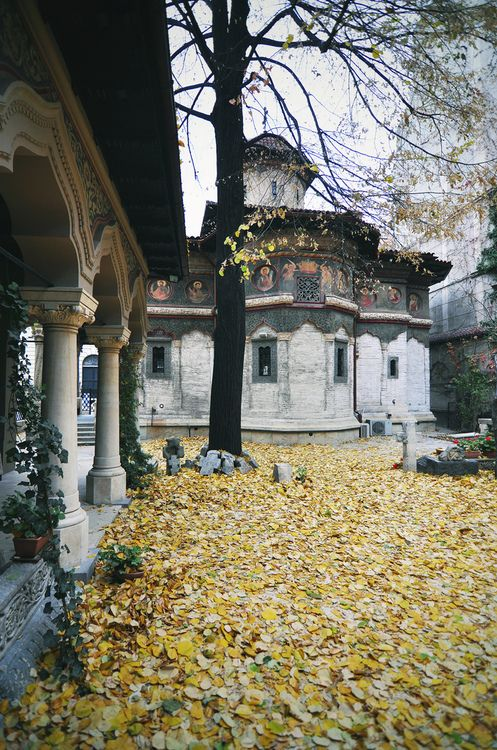 allthingseurope:  Stavropoleos Monastery, Bucharest, Romania (by fusion-of-horizons)