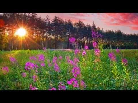 Sa ai o zi minunata (Have a wonderful day) - YouTube