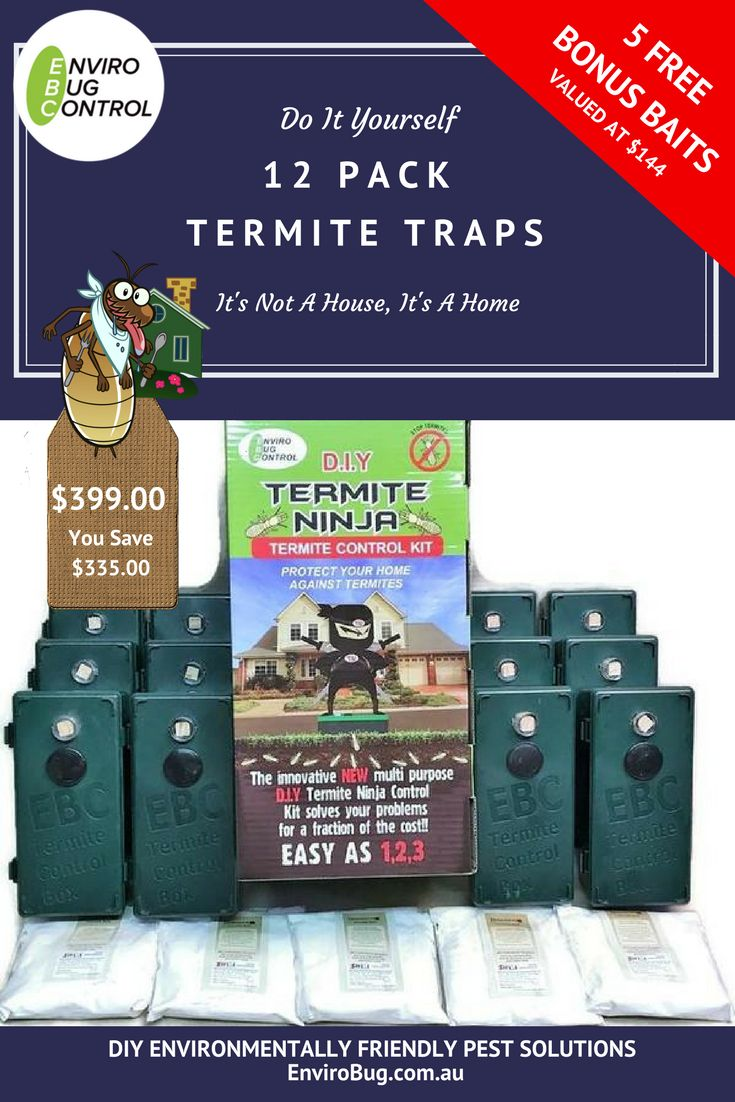 Termite inspection phoenix and tucson pest treatment companies phoenix and tucson pest treatment companies assist homeowners in arizona pest control pinterest insects solutioingenieria Image collections