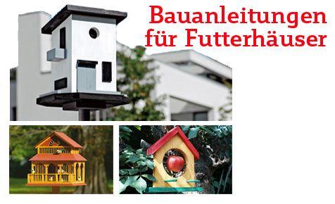 """Über 1.000 Ideen zu """"Vogelhaus Bauen auf Pinterest ..."""