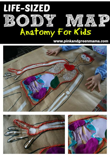 Body Map * Life-Sized Body Map Kid's Art Project & Anatomy Lesson. Crafty & educational.  Kids use their own body outline. Summer DIY science activity. From Pink & Green Mama.