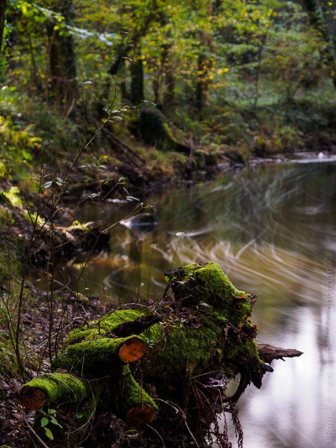 octobre 2017 | balade sur la la rive de L'Odet : filés sur l'eau  - à Ergué-Gabéric © Paul Kerrien  https://en-photo.fr Finistère Bretagne