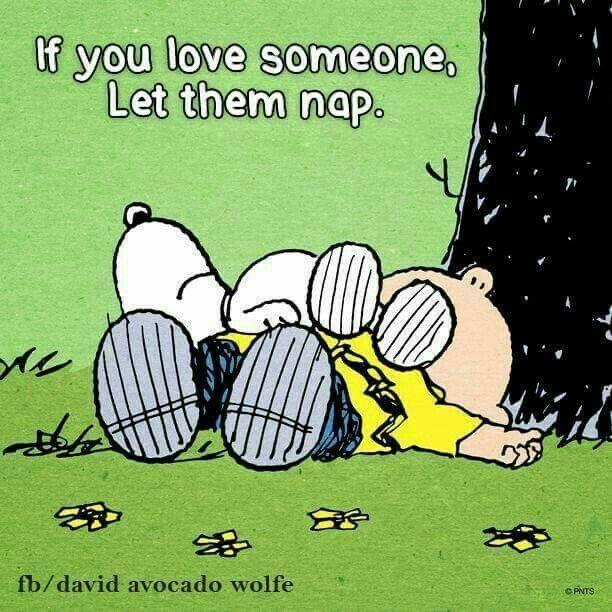 Peanuts Kiss And Makeup: 39 Besten Snoopy Weihnachten Bilder Auf Pinterest