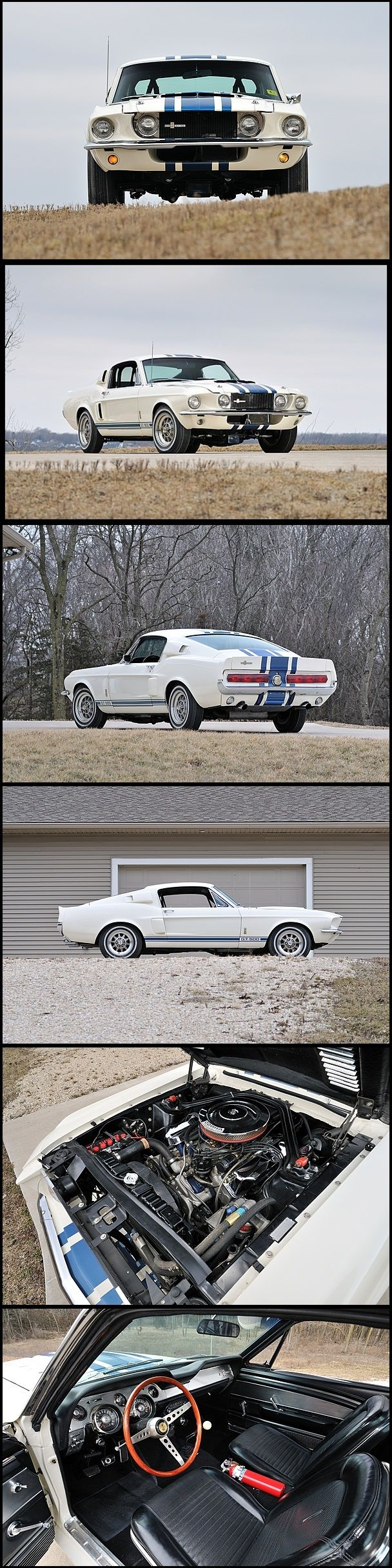 1967 Shelby GT500 Super Snake this has to be one of the all time GREATS! Love this car.