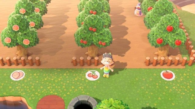 I Made Fruit Labels For My Orchard Ma 2662 8092 6889 Horizondesigns Animal Crossing Fruit Animals New Animal Crossing
