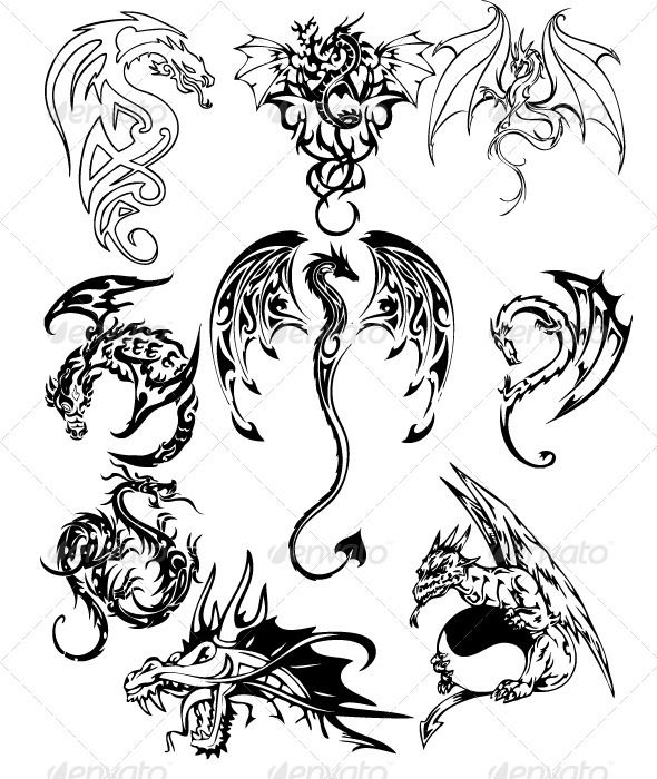 celtic dragon tattoos | pack in dragon tattoo series, contains nine dragon vector tattoos ...