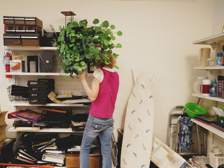 "Saatchi Online Artist: Robert Bender; Digital, Photography ""plant"""
