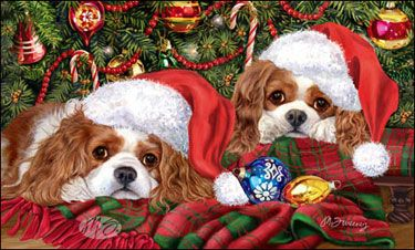 """Cavalier King Charles Christmas cards are 8 1/2"""" x 5 1/2"""" and come in packages of 12 cards. One design per package. All designs include envelopes, your personal message, and choice of greeting. Select the greeting of your choice from the drop-down menu above. Add your personal message to the Comments box during checkout"""