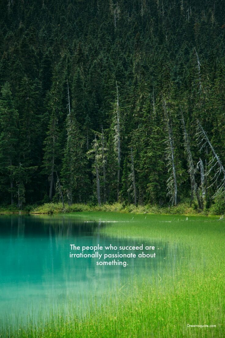 265 Motivational Inspirational Quotes About Life To Succeed Landscape Nature Photography Nature
