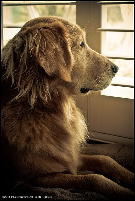 Waiting for Mom!