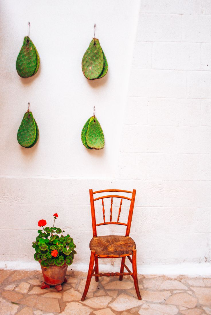 Italian country side details #cactus #relax #interiordesign #countryside