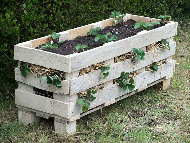 pallet planter vertical | 15 Upcycled Garden Projects - with links | Chicken Scratch