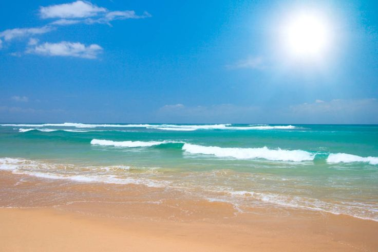 beach scenes | Royalty Free Image of Peaceful Beach Scene ...