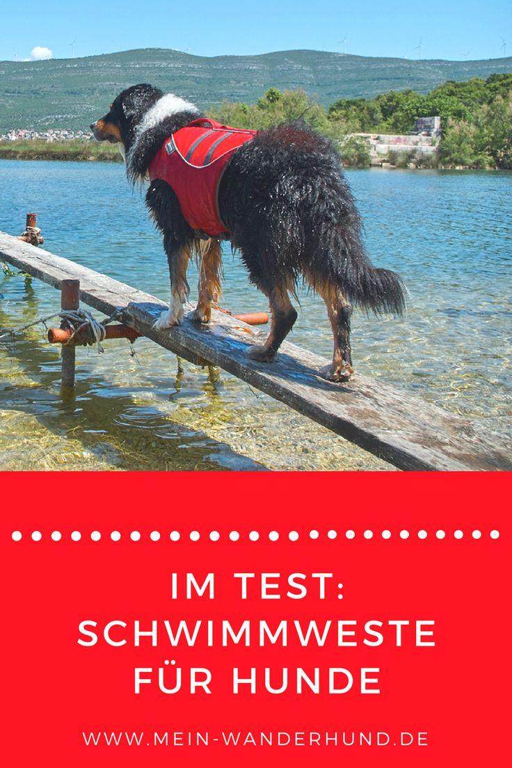 Wir haben eine Schwimmweste von Ruffwear für Hunde getestet