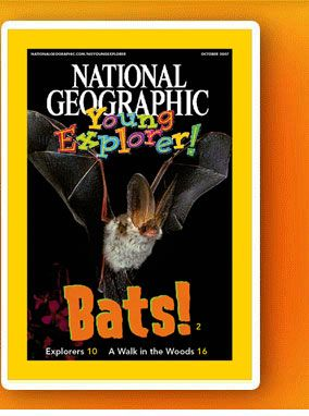 FREE National Geographic ebook on bats.