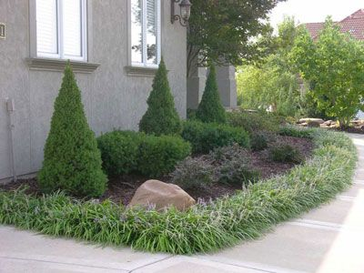205 best front yard ideas images on pinterest gardening for Border grasses for landscaping