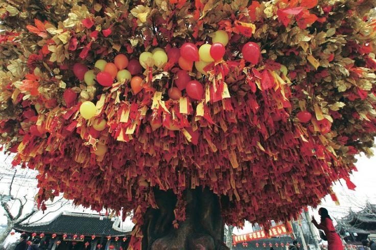 SHANGAI - Felice Anno Nuovo: i capodanni più strani - Focus.it
