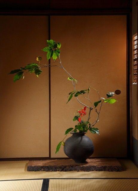 過去の花会 - 七草庵 Nanakusa-an 京都市北区 西尾知子主宰の和花なげいれ・洋花教室