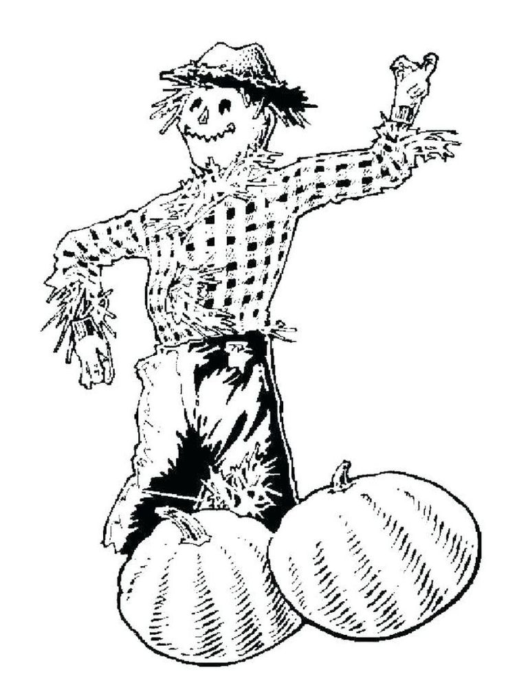 scarecrow coloring page to print. The following is our