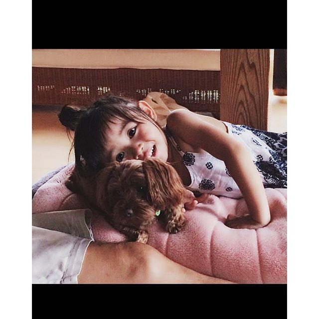大好きなここちゃん♡ 帰る前にぎゅーってしてから帰るのがお決まりの凜さん🐶❤️❤️ 今日は雨だから、映画中~🎥 コラライン観てる。知ってる人いるかなぁ?なかなか、コアな映画だけど凜さんは大好きです…w  #3歳2カ月#move#仲良し #愛犬#トイプードル#凜さん#kids#kids_japan #kidsgram_tokyo #instagood #love#ig_kids #ig_japan #kidsphoto #mamanoko#ママリ#実家のワンちゃん#べったり#凜のはじめてのお友達はココちゃん#コララインとボダンの魔女