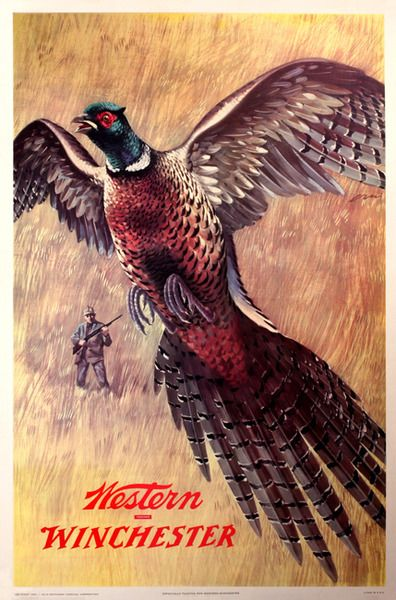 Pheasant Hunting in the olden days.