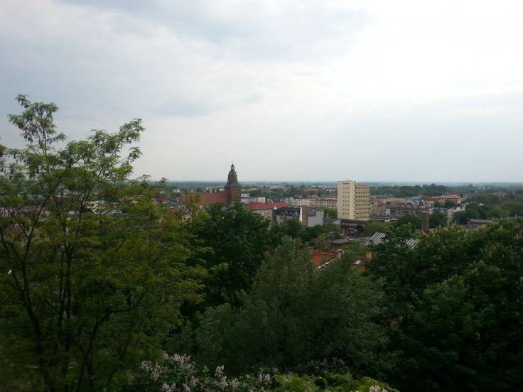 Katedra widoczna z Parku Siemiradzkiego w Gorzowie Gorzów Wielkopolski