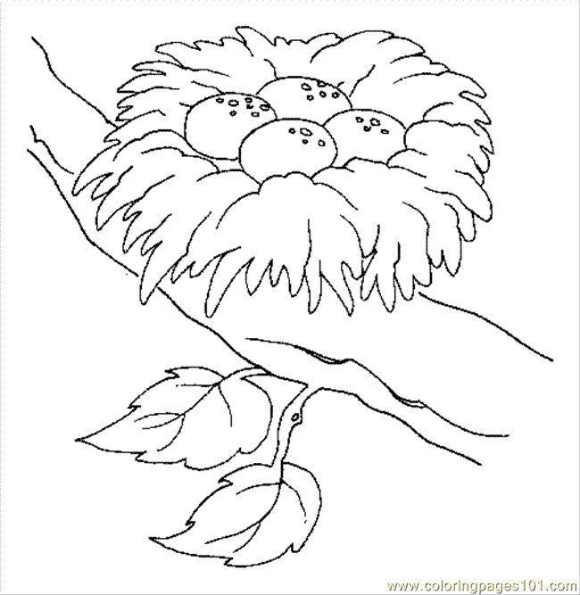93 Coloring Page Bird In Nest