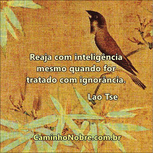 Reaja com inteligência mesmo quando for tratado com ignorância. Lao Tse #confucio #taoismo #oriente https://caminhonobre.com.br/2012/06/23/todobem/