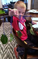 "Jr. Wacky Scientist exploring, ""How long does a leaf stay fresh?"""